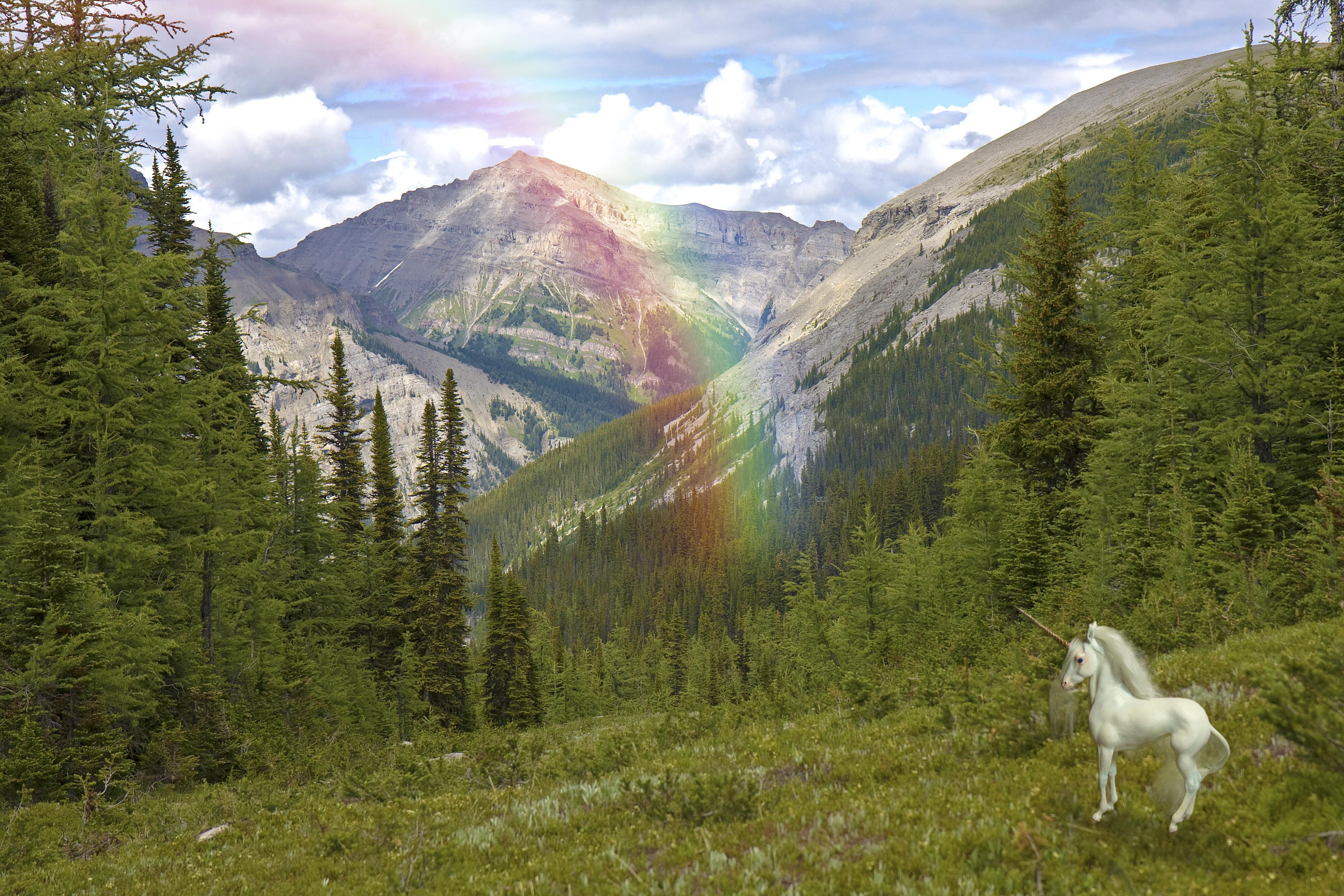 alpine w unicorn only