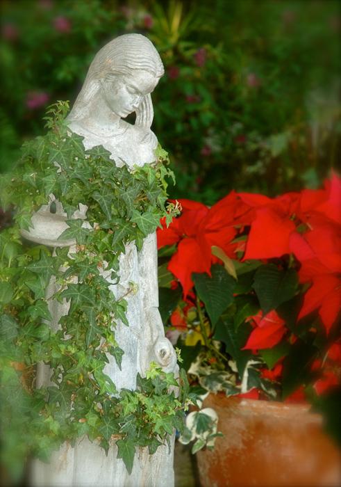 christmas gift image 2web