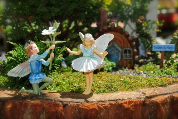 fairy-boy-courting-large