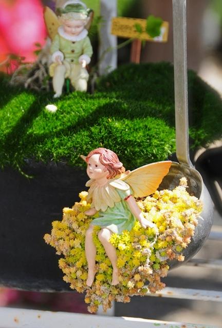 fairy-in-ladle