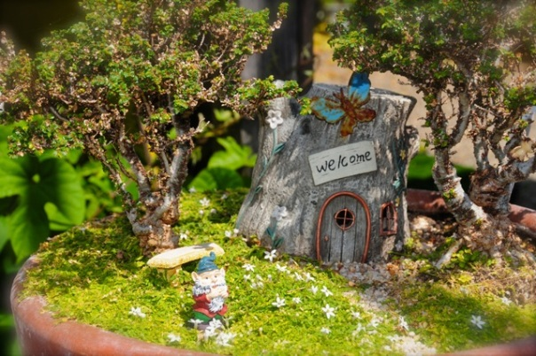 gnome-in-the-garden
