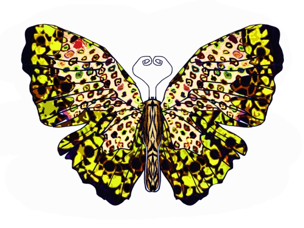 Leopards_dance_Butterfly