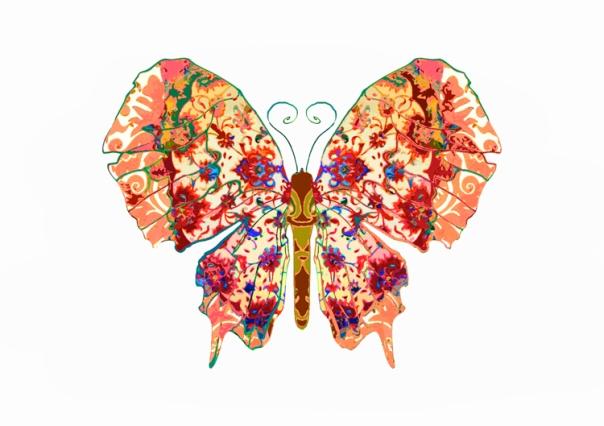 Peaches_n'_Cream_Butterfly