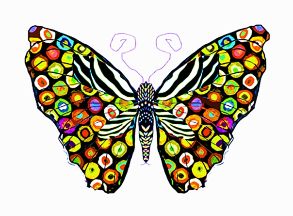 Spots_of_color_butterfly