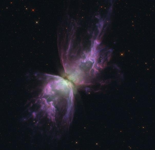 butterfly_nebula_1