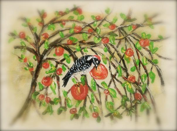 woodpecker persimmon web